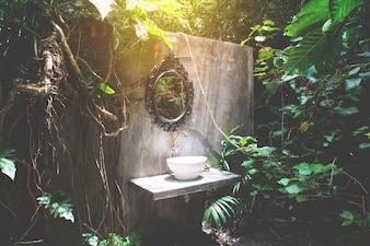 Umywalka rocznika drzewa umywalka umywalka wzrostu