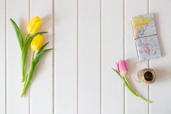 Widok z góry na powierzchni drewnianych z tulipanów, mapy świata i liny