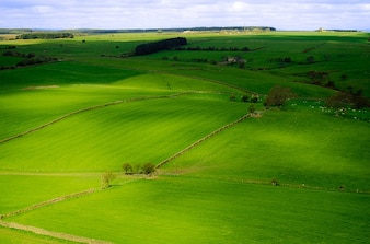 Yorkshire anglia sezon wiosna północ krajobraz