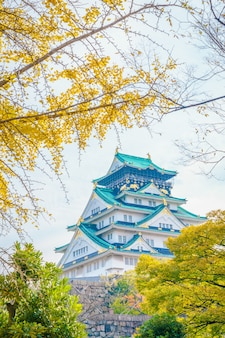 Zamek Osaka w Osaka w Japonii