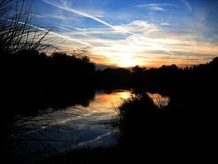 Badesee árbol de la puesta del sol ver el cielo hermoso tramo