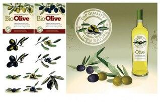 el tema del aceite de oliva de vectores