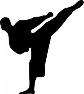 silueta de karate