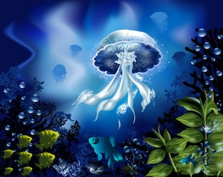 hermoso mundo submarino