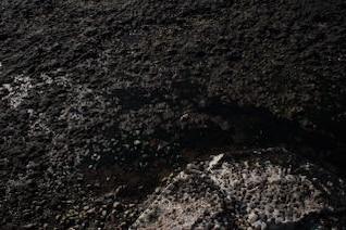 rocas húmedas