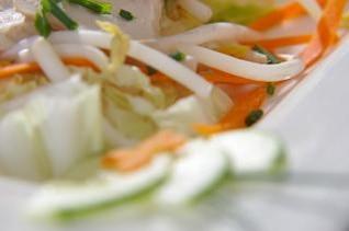 ensalada de pollo, vegetales