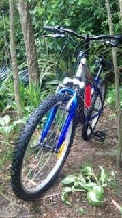 bicicleta de radio en el parque Roberts