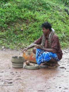 encantador de serpientes-Sigiriya