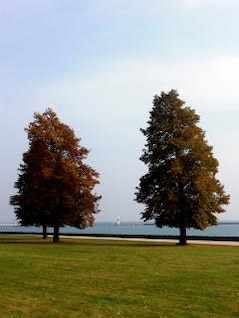 otoño, magra
