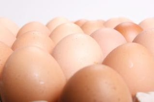 los huevos de los alimentos