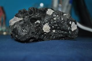 roca de coral del océano
