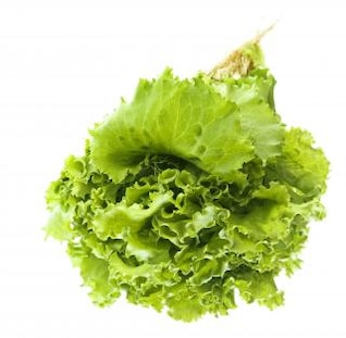 Verdes aisladas, la nutrición