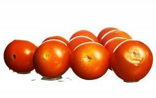 tomate aisladas