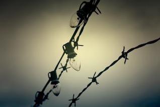 alambre de púas y las luces de la luz