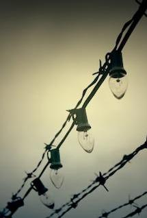 alambre de púas y las luces