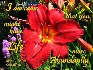 vida en abundancia