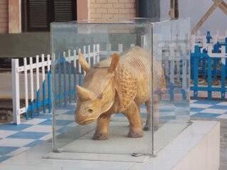 la estatua del rinoceronte