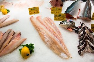 pescado en la nutrición de hielo