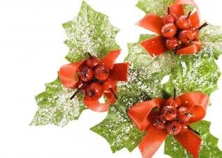 decoración de la Navidad del acebo