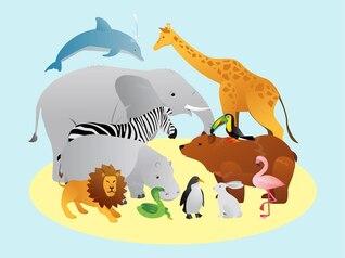 paquete de vectores animales salvajes naturales