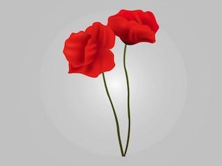 dos flores rojas