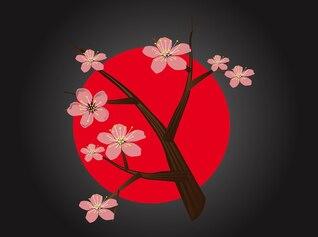 Círculo de la flor de cerezo japonés vector