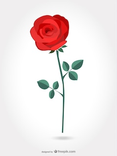 Rosa artística roja