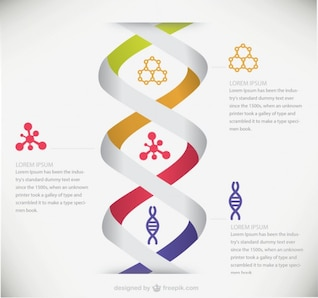 Plantilla de infografía de ADN