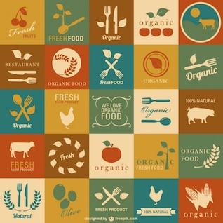 Conjunto de vectores de comida orgánica, fresca y saludable
