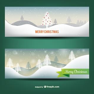 Banderas Nevado de Navidad