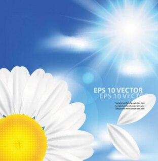 La manzanilla y el vector de sol