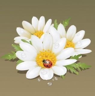 Abstracto hermoso realista flor floral