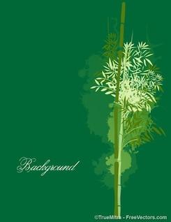 Bambú sobre fondo verde