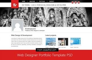 Diseñador web template psd cartera