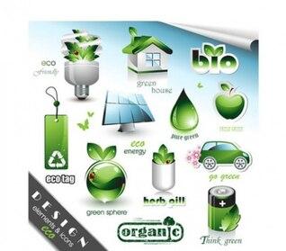 Elegante elementos orgánicos conjunto de vectores eco