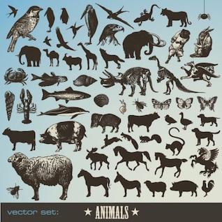 los animales icono material de vectores