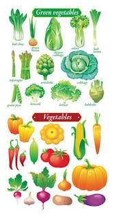 frutas y hortalizas materiales vector