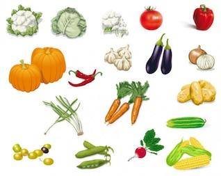hortalizas imagen vectorial material