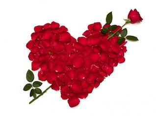 pétalos de rosa compuesta de material de imagen en forma de corazón