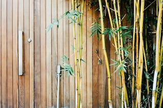 Madera y bambú
