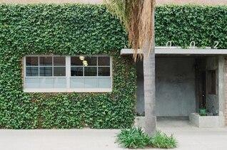 Vegetal fachada