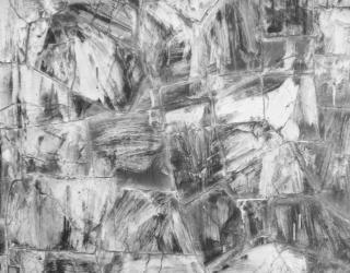 Abstracto b & w rozó la pared de fondo