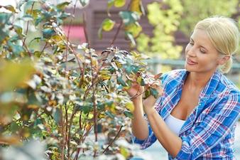 Agricultura Natural positivo temporada naturales
