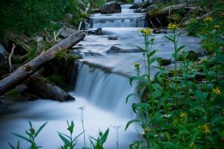 agua brumosa