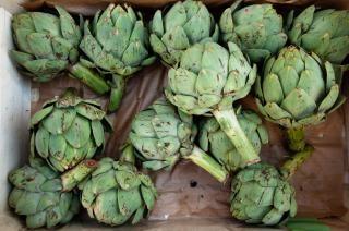 alcachofa saludable