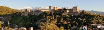 Alhambra rodeada de árboles verdes