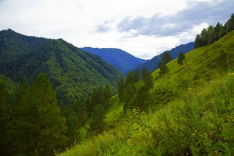 Altai montañas