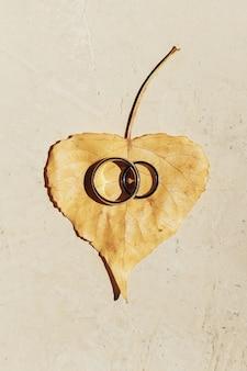 Anillos de boda de oro se encuentran en las hojas caídas