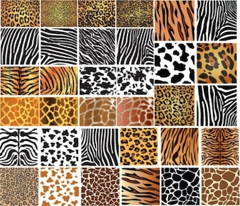 Animales patrones de la piel - Juego de 34 texturas salvajes