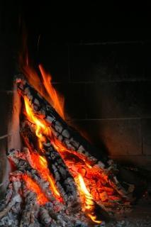 árbol ardiendo, ardiendo